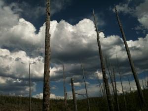 Big Sky over Mallard Lake